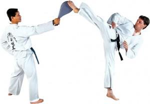 adult-martial-arts